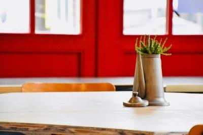 Une plante en pot sur une table, en intérieur